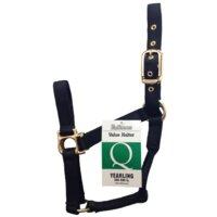 Halter Yearling Q Black