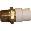 Fittings: Adapters, Cpvc