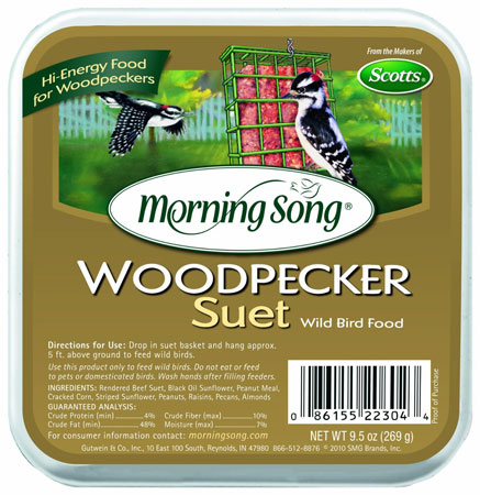 Suet Cake Woodpecker Morn Song