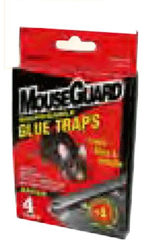 Mouse Trap Glue 4-Pack 72/Ds