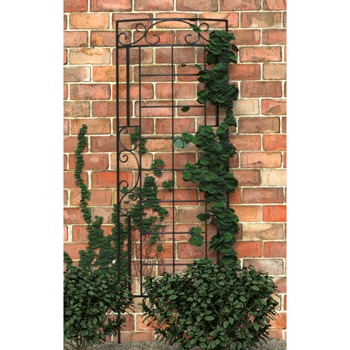 Trellis 7x24 Romantic Curved