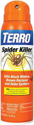 Insecticide Terro Spider Sp