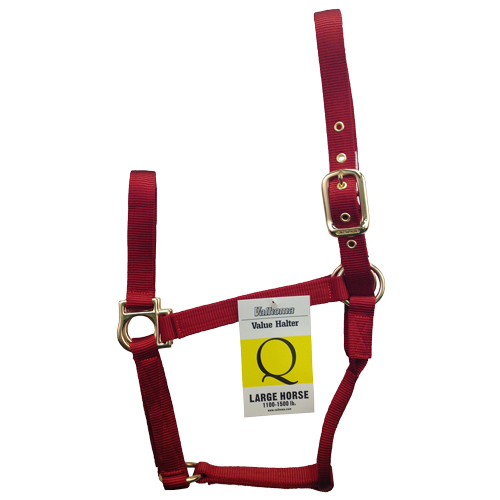 Halter Large Q Red